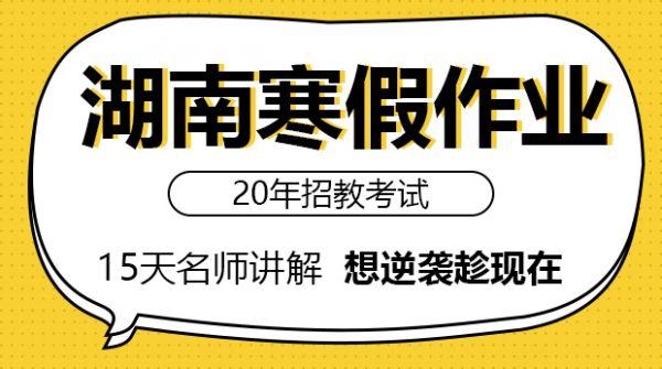 20年湖南寒假作业15天名师讲解