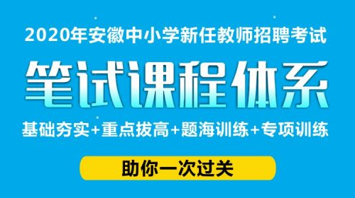 20年々安徽招教中小�W�P��n程�w系