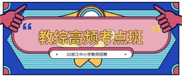 20浙江中小学教综高频考点班