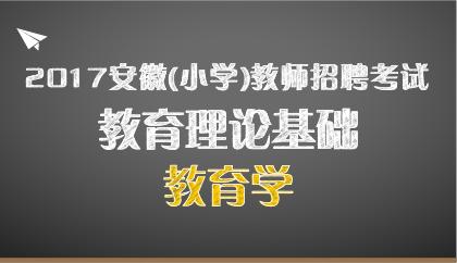 17安徽 小学教育学