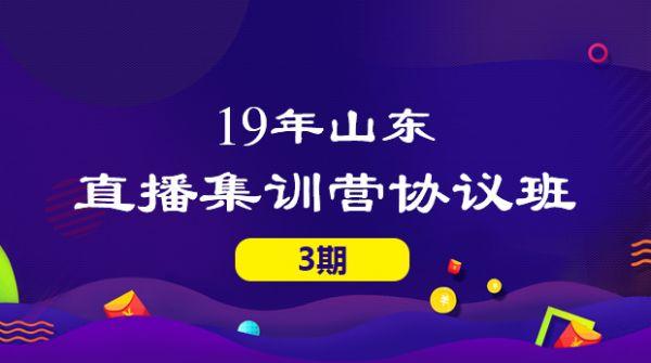 19山东集训营协议班(3期)